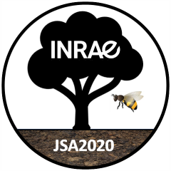 logo_JSA2020